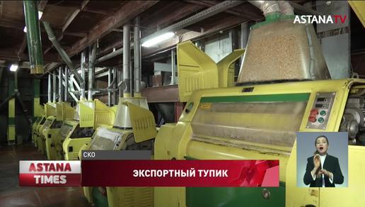 Казахстанские мукомолы не могут экспортировать продукцию за рубеж из-за нехватки вагонов