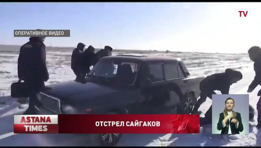 Две банды браконьеров задержали в Западном Казахстане