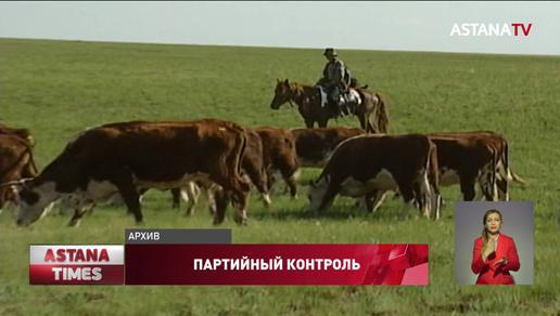 В Казахстане дефицит пастбищ, - комитет партконтроля «Nur Otan» дал ряд рекомендаций Минсельхозу