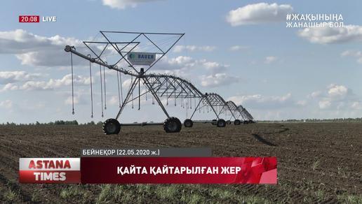Павлодар облысында шаруалардың жерсіз қалдырған диқан, жерді қайтарып беруге мәжбүр болды