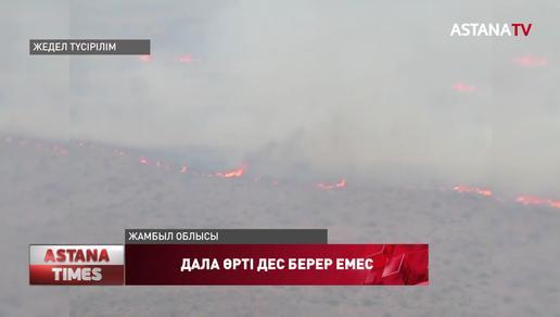 Жамбыл облысында дала өрті дес берер емес
