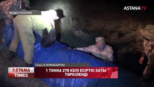Жамбыл облысында 1 тонна 278 келі есірткі тәркіленді