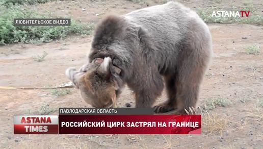 Российский цирк застрял на границе