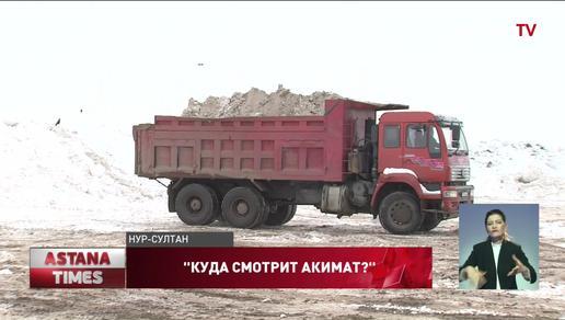 Снежный коллапс парализовал жизнь в Нур-Султане