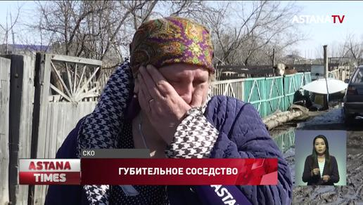 «Живём с крысами и дышим ядом», - сельчане жалуются на соседство с элеватором в Северном Казахстане