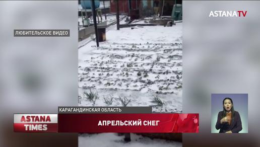Апрельский снег погубил местные огороды балхашцев