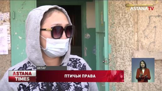 """""""Жить невозможно"""": женщина разводит индюшек в квартире в Актау"""