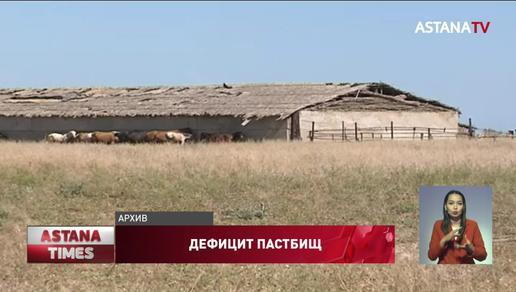 В Казахстане не хватает 32 млн гектаров пастбищ