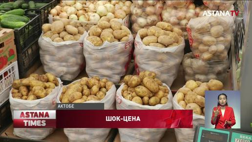 Цены на картофель взлетели до 500 тенге за килограмм в регионах Казахстана