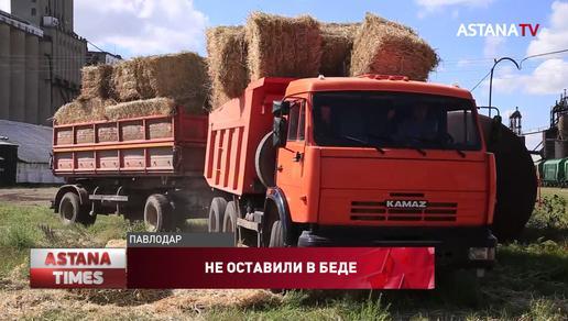 Павлодарские аграрии отправили 250 тонн сена в Мангистаускую область