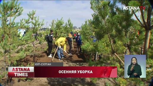 В День чистоты в столице высадили три тысячи молодых деревьев
